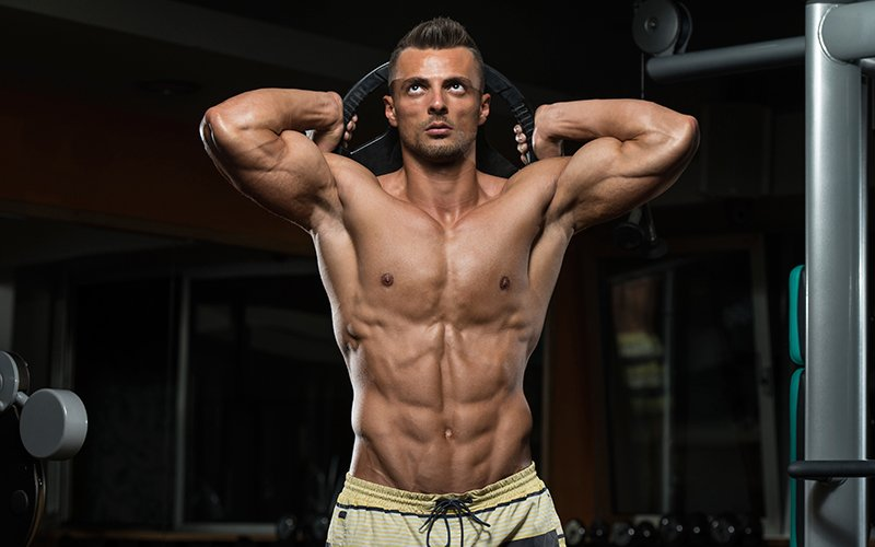 muscle building nutritional